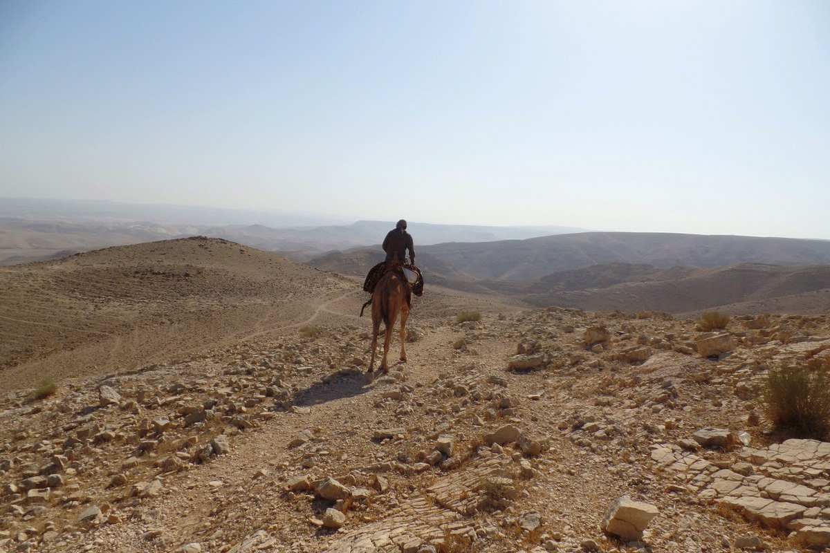 Rider on the ancient camel route